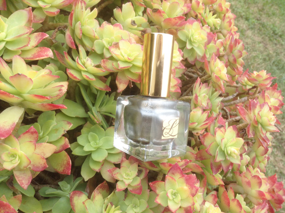 smoked Chrome Estee Lauder