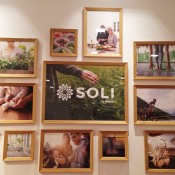 soli by amway